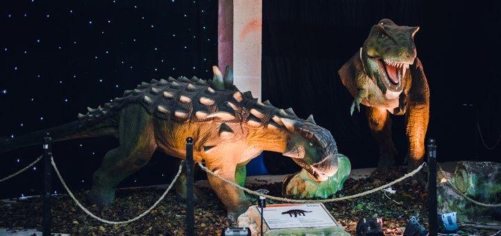 Билеты на выставку «Живые Динозавры» в будние дни в павильон 11 на территории ВДНХ