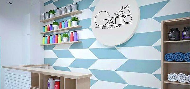 До 3 місяців занять Twerk в «Studio Gatto»