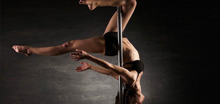 До 5 индивидуальных занятий на пилоне с преподавателем  Pole Dance в студии «FreeLady»