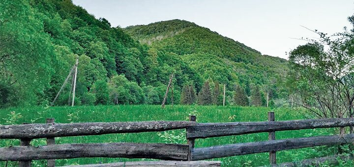 От 3 дней отдыха в отеле с собственным источником минеральной воды «Золотое руно» в Закарпатье