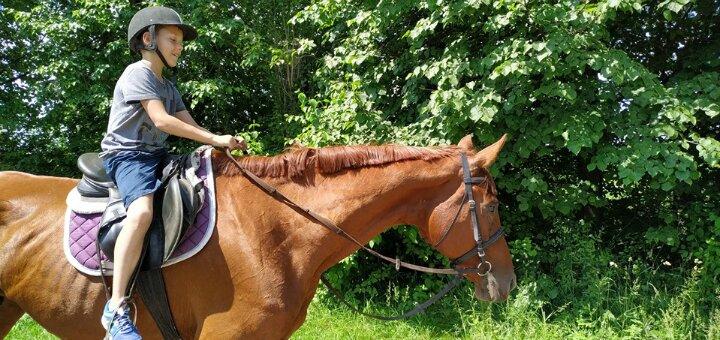 Знижка до 45% на прогулянку на конях від кінного клубу «Коні Львів»